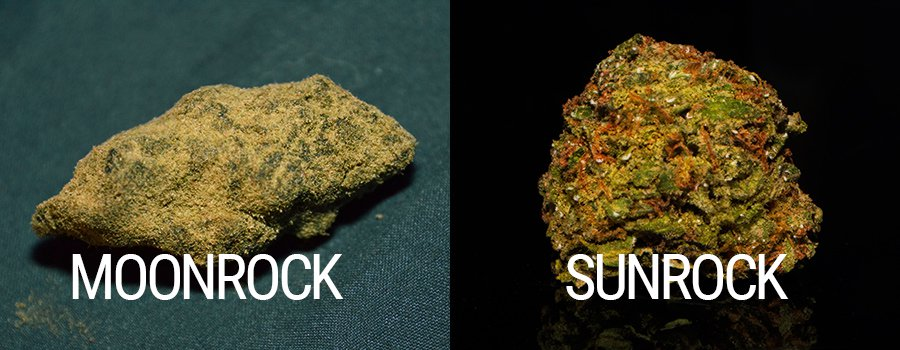 Moon rock weed seeds