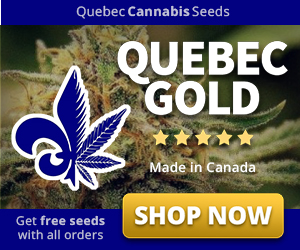 Weed seed bank in usa
