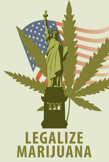 Can you buy marijuana seeds in the us