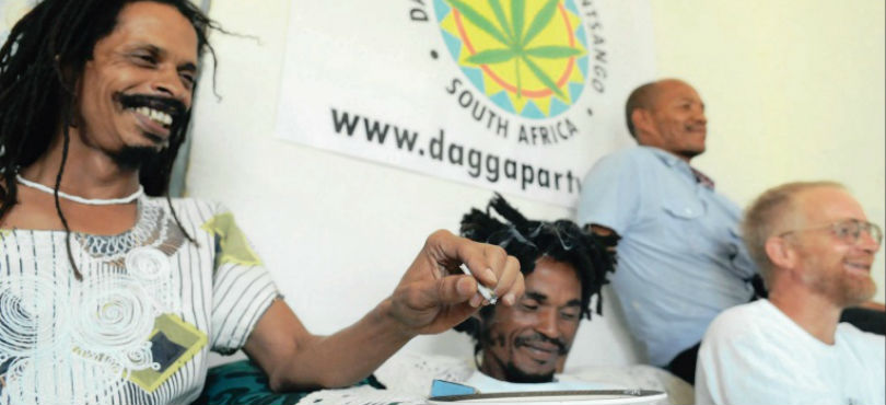 Buy cannabis seeds south africa
