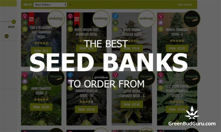 Marijuana seeds paypal accepted